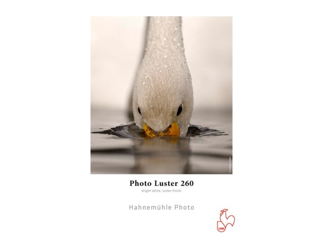 "Hahnemühle Photo Luster Rulle 24"" x 30m 260gr"